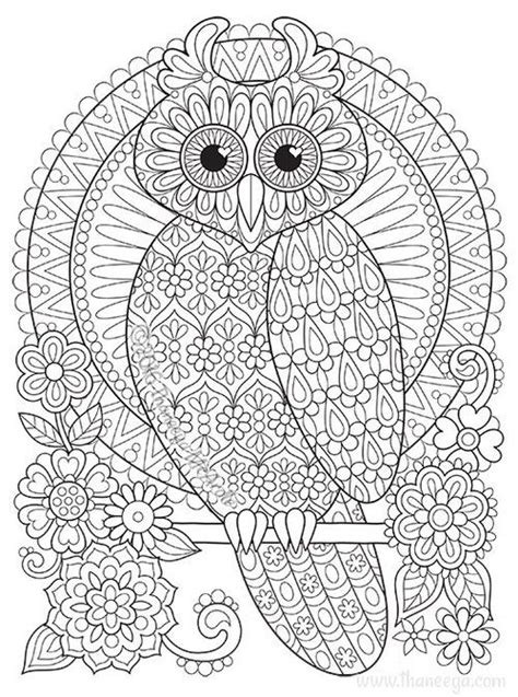 owl coloring page  thaneeya mcardles groovy owls