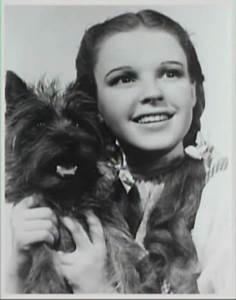 Dorothy and Toto | Things I like | Pinterest