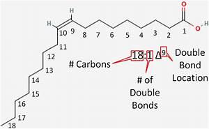 2 33 Fatty Acid Naming  U0026 Food Sources