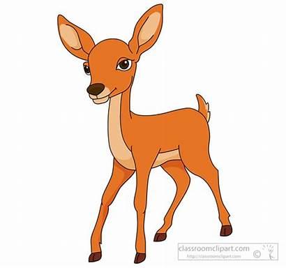 Deer Clipart Dear Fallow Clip Cliparts Printable