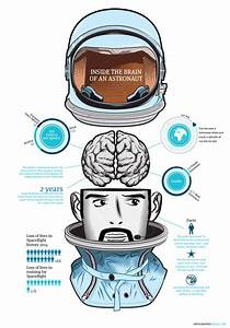 Inside The Brain Of A Astronaut