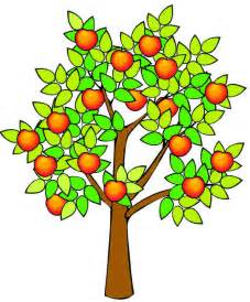 Apple Tree Drawing