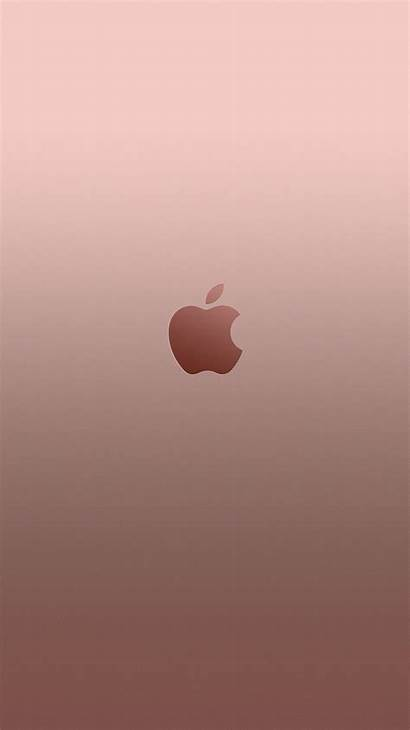 Gold Rose Iphone Wallpapers 6s Plus Girly