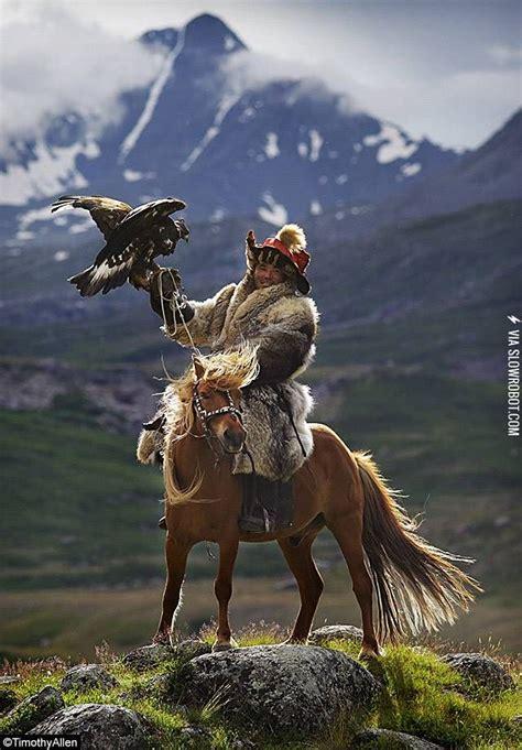 horse mongolian horses mongolia birds prey awesome