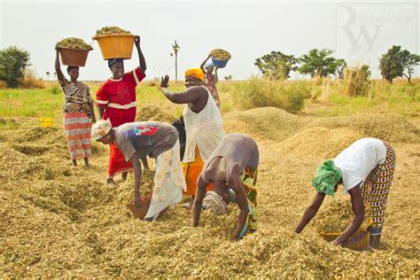 bureau ministre agriculture la vie sénégalaise senegal