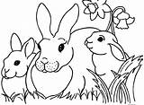 Coloring Worm Inch Bunny Cartoon Template Inchworm Easter Printable Bunnies Colouring Rabbit sketch template