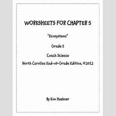 Chapter 5 Worksheets  5th Grade Coach Science Book  North Carolina Edition