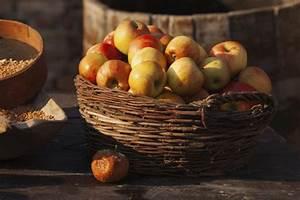 Zimmerpflanzen Alte Sorten : alte apfelsorten sind heute u erst beliebt garten tipps ~ Michelbontemps.com Haus und Dekorationen