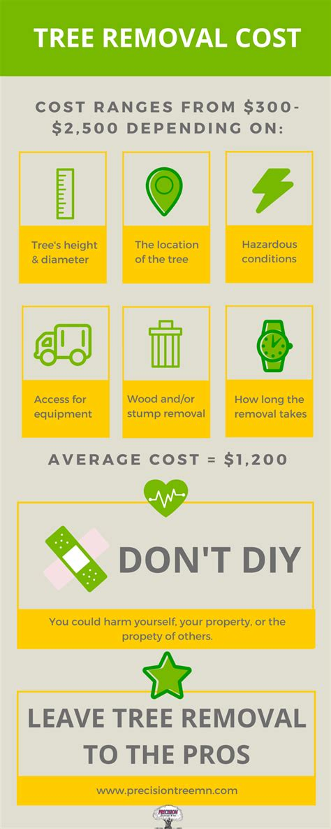 The Average Cost Of Tree Removal Don't Get Stumped On