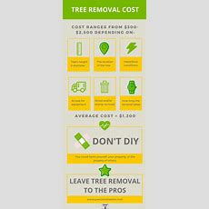 The Average Cost For Tree Removal Services Tips