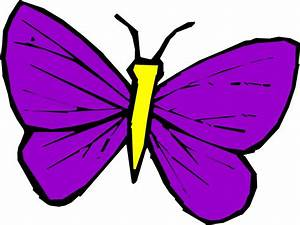 IMAGES OF Cartoon Butterflies - ClipArt Best
