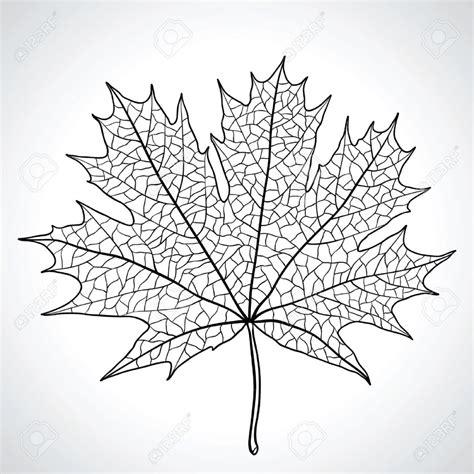 nature drawing  getdrawingscom   personal