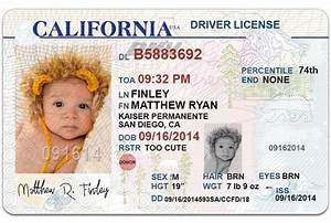 I Will Send 1 California Drivers License Photoshop Template