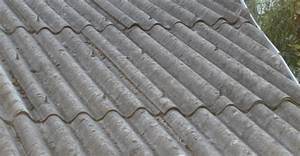 Entsorgung Asbest Kosten : tarpah entkernungstechnik gmbh schadstoffsanierung ~ Frokenaadalensverden.com Haus und Dekorationen