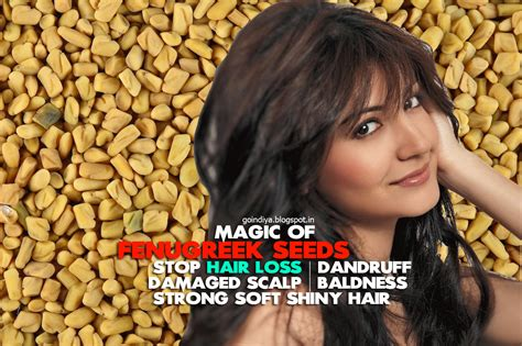 Fenugreek Seed For Hair Loss Dandruff Damaged Scalp