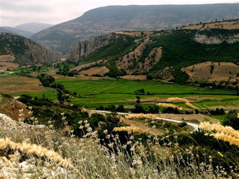 Green Iran Landscape And Rural Photos Lifes Untold Tales