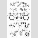 Volvox Life Cycle | 510 x 794 jpeg 123kB