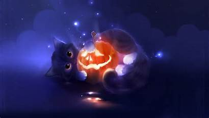 Cats Space Cat Wallpapers Epic Phone Stray