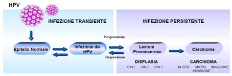 Hpv Dna Test Costo by Istituto Di Analisi Mediche Quot Biosanitas Quot