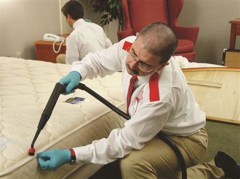 Bed Bug Chemicals Safety & Treatment. Commercial Vehicle Loans For Bad Credit. Home Contents Insurance Ireland. Dermal Filler Injections Insurance With A Dui. Photography Courses In Kolkata. Washington State Lemon Laws Stop Ddos Attack. Best Online It Degree Programs. Allianz Global Investors Liposuction New York. E Visa Treaty Countries Saville Middle School