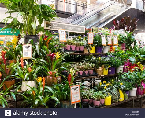 Home Depot Garden Decoration by Home Depot Store Garden Center Display Nyc Stock Photo