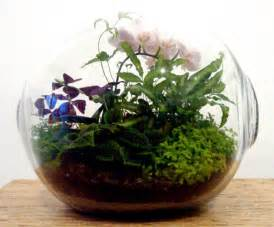 designer terrarium terrarium inhabitat sustainable design innovation eco architecture green building