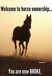 The bond of a h... Horse Owning Quotes