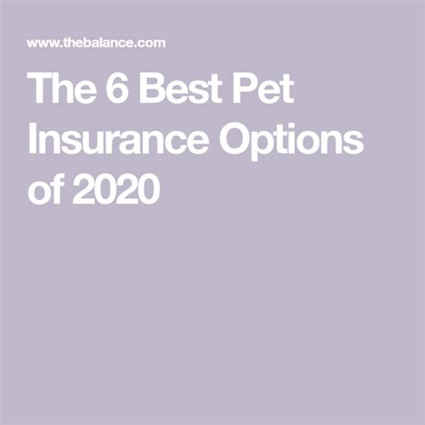 This is the only pet insurance company on my top 10 list that offers expanded coverage for exotic animals and birds. The Best Pet Insurance Companies of 2020 in 2020   Best pet insurance, Pet insurance, Pets