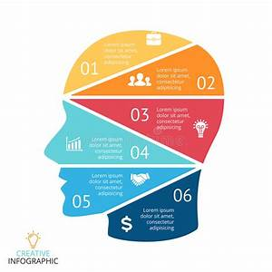 Vector Brain Infographic  Template For Human Head Diagram