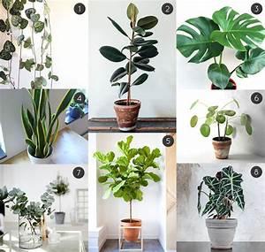 meuble plantes d interieur idees decoration interieure With meuble plantes d interieur