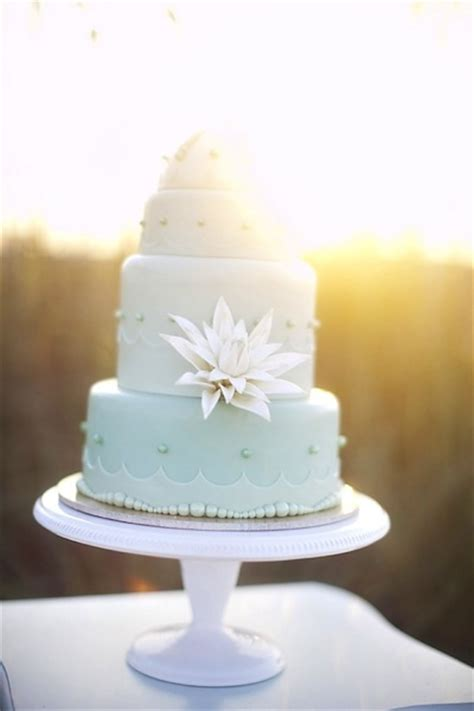 sea shell wedding cakes   perfect fit   beach