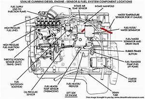 Dodge Ram Engine Parts Diagram  Dodge  Wiring Diagram For