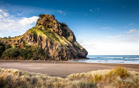 Lion Rock Piha Beach New Zealand Stock Image Image Of