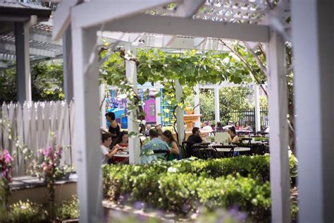 cafes  play areas  hills sydney hills district mums