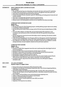 funky cyber security resume examples mold simple resume With cyber security resume template