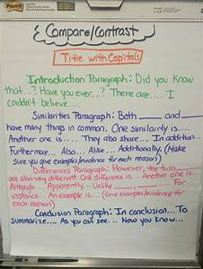 Comparison And Contrast Essay Examples Layout And Examples Of Compare Contrast Informative