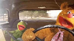 Driving The Muppets GIF - Find & Share on GIPHY