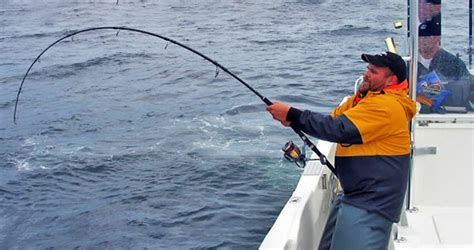 jigging rod rods fishing popping lure comparison finding