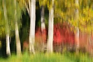 Die Farben Des Herbstes : farben des herbstes forum f r naturfotografen ~ Lizthompson.info Haus und Dekorationen