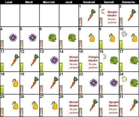 cuisiner celeri magazine petit jardin n 109 janvier 2016 jardinage