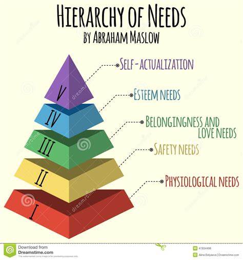 hierarchie cuisine vector illustration hierarchy of human needs by abraham