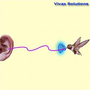 The Doppler Effect - fully animated Tutorial for easy ...
