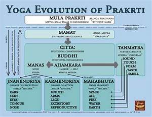 Yoga Sutras Explained Pdf  U2013 Blog Dandk