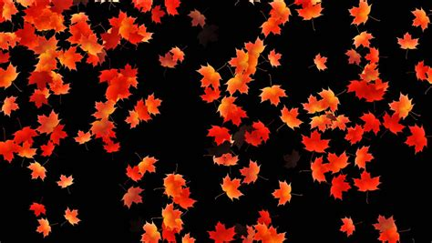 Animated Falling Leaves Wallpaper - animated falling leaves background 11 187 background check all