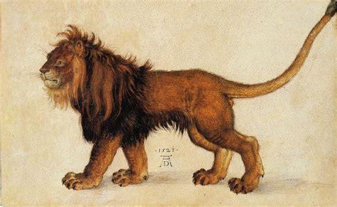 albrecht duerer lion    watercolour