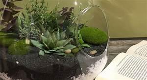 Terrarium Plante Deco : diy un terrarium avec des plantes artificielles maison ~ Dode.kayakingforconservation.com Idées de Décoration