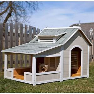 Hundehaus die skurrilsten beispiele die es gibt for Large insulated dog house