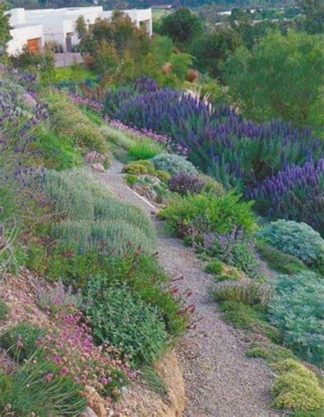 hillside slope 69 best images about slopes and hillsides on pinterest gardens hillside landscaping and falmouth