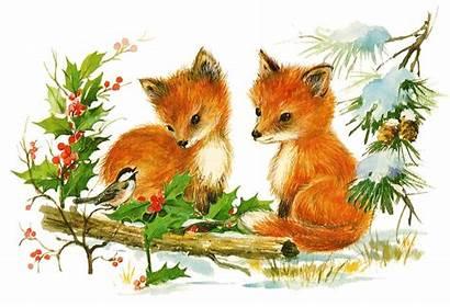 Christmas Retro Fox Clip Foxes Adorable Postcards