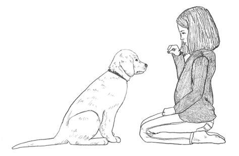 study dogs base actions  human behavior news